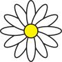 Květiny Sedmikráska